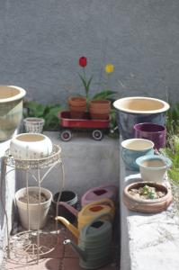 Pretty fflower pots